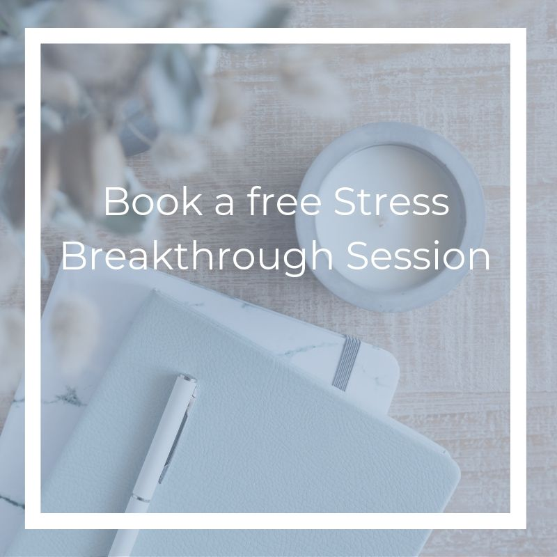 Michelle MacLean _ health and wellness coach _ michelle-maclean.com _ stress breakthrough session
